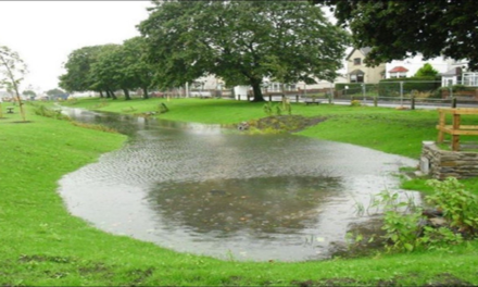 Does surface water from the property drain to a public sewer?