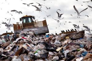 landfill sites
