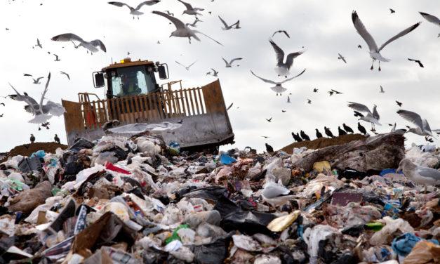 Rubbish dumps