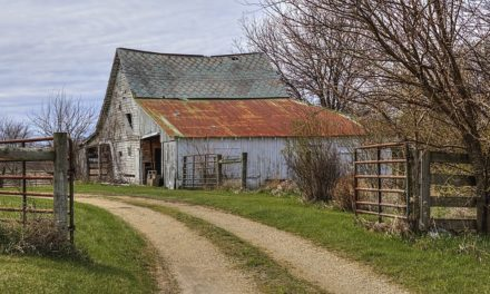 Planning change announced to make it easier to convert farm buildings into homes