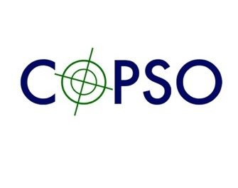 Search trade body CoPSO calls for clarity from Government