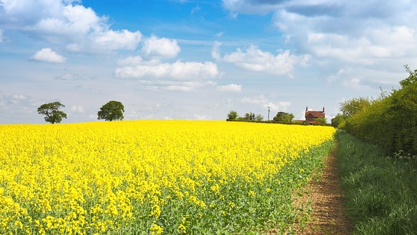 Launching on Monday 12th August – Groundsure Agricultural – The definitive agricultural land use risk assessment