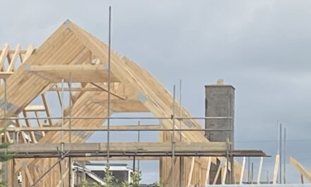 Buyer demand for new homes plummets to lowest levels in six years, says FMB