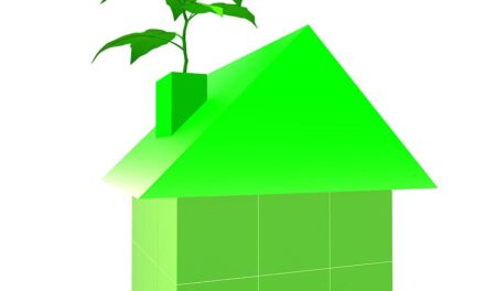 BMF calls for bigger thinking to transform homes under Green Industrial Revolution